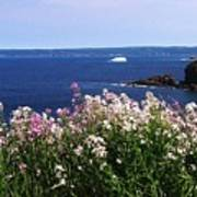 Wild Flowers And Iceberg Art Print