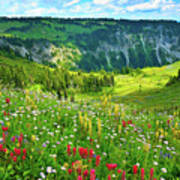 Wild Flowers Blooming On Mount Rainier Print by Feng Wei Photography