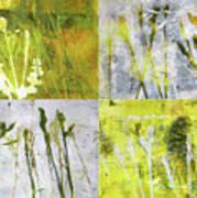 Wild Grass Collage 2 Art Print