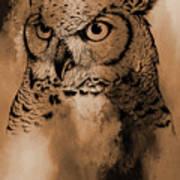 Wild Owl Eyes Art Print