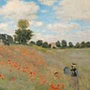Wild Poppies Near Argenteuil Art Print