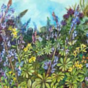 Wild Prairie Lupine Art Print