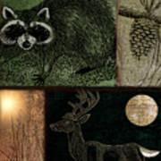 Wild Racoon And Deer Patchwork Art Print