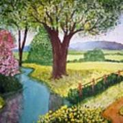 Wild Rose Creek Art Print