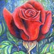 Wild Rose One Art Print