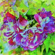 Wild Roses 3 Art Print