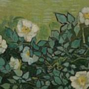 Wild Roses Saint-remy-de-provence, May-june 1889 Vincent Van Gogh 1853 - 1890 Art Print