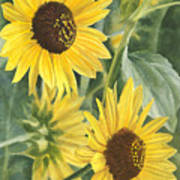 Wild Sunflowers Art Print
