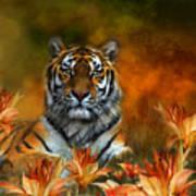 Wild Tigers Art Print