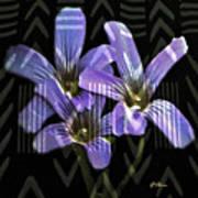 Wild Wildflowers Art Print