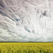 Wild Winds Art Print