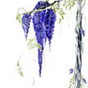 Wild Wisteria Art Print