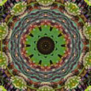 Wilder Flower Mandala Art Print