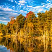 Wilderness Pond - Paint Art Print