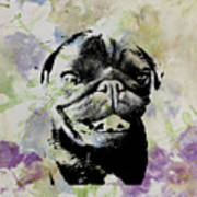 Wildflower Pug Art Print