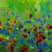 Wildflowers  560121 Art Print