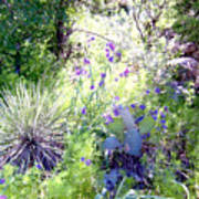 Wildflowers And Cactuses Art Print