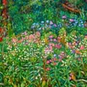 Wildflowers Near Fancy Gap Art Print