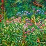 Wildflowers Near Fancy Gap Art Print