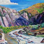 Wildlife On The Colorado River Art Print
