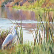 Wildlife Refuge Art Print
