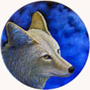 Wiley Coyote Art Print by Brian  Commerford