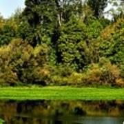 Willamette River Reflections 3813 Art Print