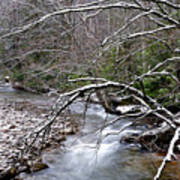 Williams River In Winter Art Print