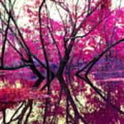 Willow Pink Art Print
