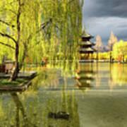 Willow Tree In Liiang China II Art Print