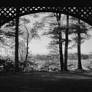 Wilson Pond Framed In Black And White Art Print