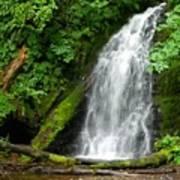 Wilson River Hwy Waterfall Art Print
