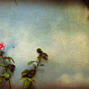 Wilting Rose Art Print