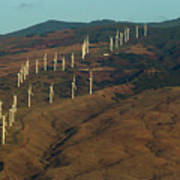 Wind Generators-signed-#0037 Art Print
