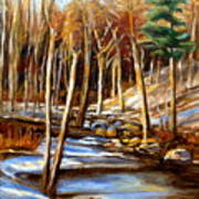 Winding Stream Art Print