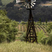 Windmill And Vineyards Art Print