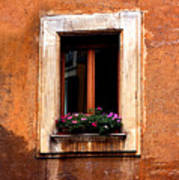 Window And Flowers Rome  Art Print