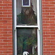 Window Dressing Art Print