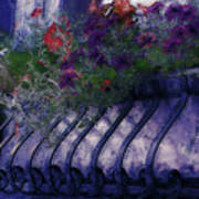 Window Flowerbox Art Print