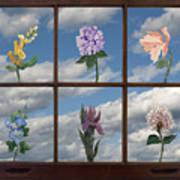 Window Garden Art Print