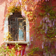 Window In Venice With Wisteria Art Print