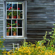 Window Of Olson House Art Print
