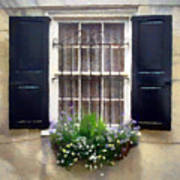 Window Shutters And Flowers II Art Print