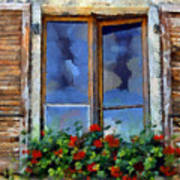 Window Shutters And Flowers IIi Art Print