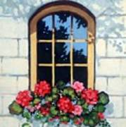 Window With Flower Box Art Print