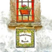 Window With Flower Pot Art Print
