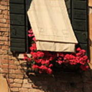 Window With Flowers In Venice Art Print