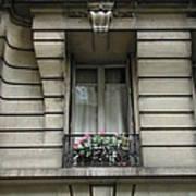 Windows Of Paris Art Print