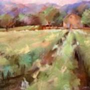 Wine Country 2 Art Print