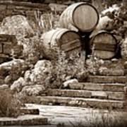 Wine Country Sepia Vignette Art Print